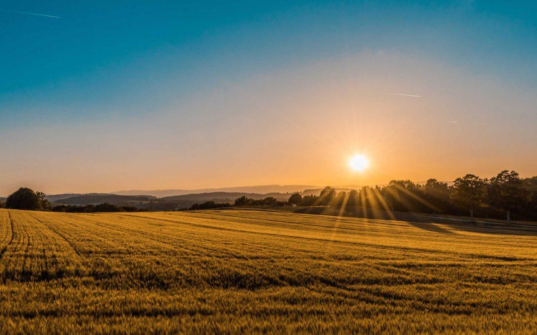 Rural Australian Way – Rural Online Marketplace